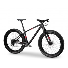 Mountain Bike EROX Carbon Booster HT
